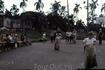 Бег в мешках на фоне пальм