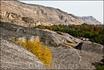 Уплисцихе  - «крепость владыки»-пещерный город в Грузии, в Горийском районе, километрах в десяти к востоку от города Гори. Уплисцихе высечен в скале и ...