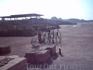 Амфитеатр и сохранившийся каркас колесницы