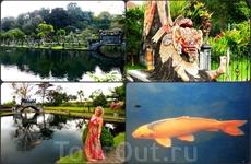 Водный дворец Тиртаганга. Индонезия. БАЛИ