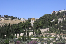 Гефсиманский сад — в настоящее время небольшой сад; в евангельские времена так называлась вся долина, лежащая у подошвы Елеонской горы и гробницы Богородицы ...