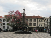 Площадь Ларгу да Се