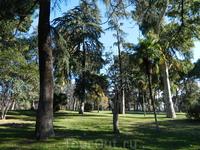 Вернулся в Мадрид. Парк Ретиро - легкие Мадрида.
