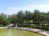 Огромное зеленое пространство, которое тянется вдоль реки, называется Alameda de Valencia. Его протяженность 3,5 км и она была здесь с незапамятных времен ...