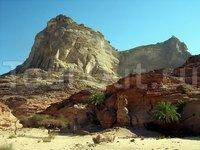 Оазис в горах Синая