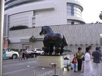 Коняшка около фонтанов