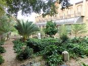 Сад художественной школы. Даже здесь наблюдаем светлый образ великого Эль Греко.