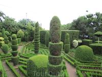 Ботанический сад - вот такую красоту создают тамошние садовники