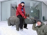 Таллинский зоопарк зимой.