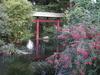 Фотография Леверкузенский Японский сад