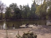 Прекрасный вид на пруд в парке. Ох, как хотелось, никуда не торопясь, посидеть здесь в шезлонге, наблюдая за птицами, облаками в небе, рябью на воде.. ...