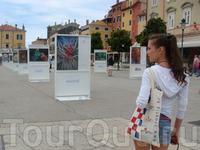 галерея картин образовалась прямо на набережной города под открытым небом, любой желающий мог прийти и насладиться фото-искусством