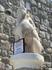 Древний Сфинкс взирает на марину Бодрума.