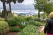 Сады Альгамбры...