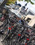 Для велосипедистов -хозяев города, приоритеты во всем