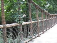 Вот такой красивый декоративный мостик ведет из одной зоны в другую. Под ним настоящий ручей, а вокруг настоящий лес