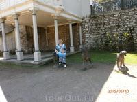 Во дворе Топкапы.
