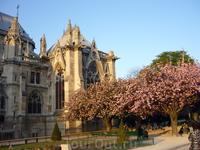 Cathédrale Notre Dame de Paris Belle belle!!!!!!!!!!!!!!!!!!!!!!!!!!!!