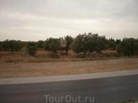 Виды за окном автобуса достаточно унылые и пустынные.