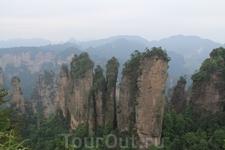 Немного фактов: заповедная зона - 391 кв.км, представляет собой карстовый ландшафт со скалами, вырастающими из густого ковра субтропической растительности. Улинъюань объединяет три заповедника - Чжанц