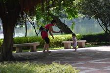 парк бонсай