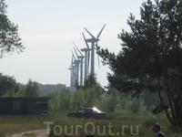 Ветряки на побережье Балтики