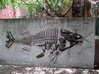 Необычный взгляд на рыбу в Kangaroo Point