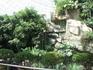 Китай, Далянь. зоопарк. сад