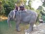 катание на слонах. посоветовали снять обувь - ощущения супер, слон теплый и слегка волосатый, ногам очень приятно )))