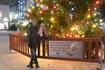 Городская ель на площади Лорди