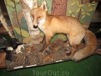 Лисичка и у нее под ногами ее добыча