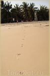 следы на песке - Соня пробежала