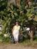 Импрессио!Я впервые увидела в живую огромный кактус!Сколько в жизни потеряно!