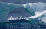 Новый год в Антарктиде