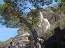 В садах Посейдона