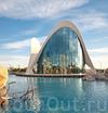 Фотография Океанографический парк Валенсии