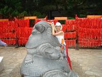 Центр Буддизма,стена(ленты) желаний, &quotзагадка черепашек&quot