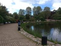 Парк Сапокка окружен заливом, который по своей форме напоминает сапог. И находчивые туристы выдвинули свое версию появления названия парка, которое по ...