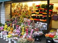 цветочный магазин. много-много рождественских венков