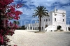 Фотография отеля Masseria San Domenico