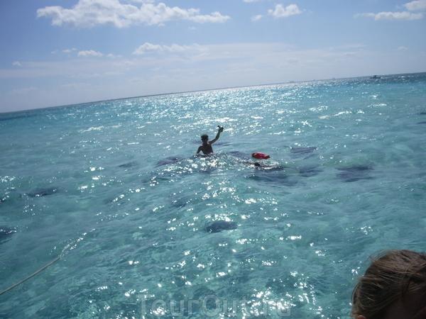 Это не Ямайка - это остров Гранд Кайман, колония Англии. Его в списке нет. Кормим скатов