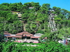 Фотография отеля Vera Forest Resort
