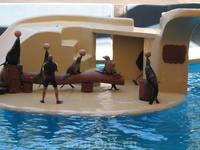Лоро-парк - шоу морских львов самое интересное