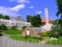 Есть на территории Ботанического сада небольшая оранжерея.