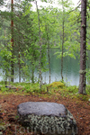 Алёнушкино озеро