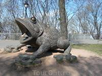 Рядом с музеем воды водится вот такая лягушка. (наверно последствие Чернобыля)