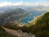 Вид с серпантина на Которское ущелье. Около 850 м. над уровнем моря.