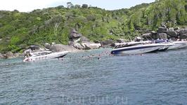 У острова №9 из Семиланских - купание с экзотическими рыбками, черепахами.