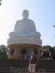 Белый Будда, сидящий на лотосе