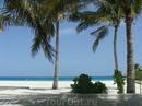 Все тот же чудесный остров